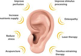Cure Tinnitus Now